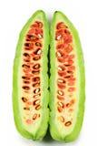 gorzki melon obrazy royalty free