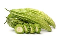 Gorzki melon, Gorzka gurda zdjęcie royalty free