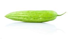 Gorzki melon Fotografia Stock