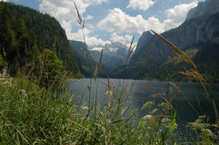 Gosausee Royalty Free Stock Photo