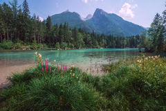 Gosausee Royalty Free Stock Photography