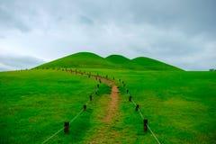 Goseong oude graven, Zuid-Korea stock afbeelding