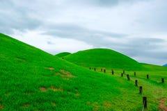 Goseong oude graven, Zuid-Korea royalty-vrije stock foto