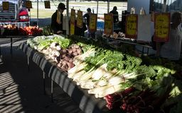 Gosford City Farmers Market Day April, 2017. Gosford, New South Wales, Australia - April 30, 2017: Gosford City Farmers Markets, marked day at Gosford. Produce stock photo