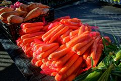 Gosford City Farmers Market Day April, 2017. Gosford City Farmers Markets, marked day at Gosford. Carrots produce and fresh vegetables for sale. Gosford, New royalty free stock photography
