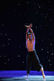 Goshawk-A tree in love-Modern dance Stock Photography