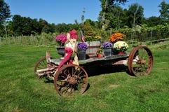Goshen, CT : Chariot de ferme avec des fleurs d'automne Photographie stock libre de droits