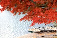 Goshikinuma ou lagoa colorida cinco durante o outono imagem de stock royalty free