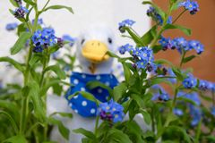 Gosling peluche flowers Stock Photos