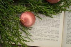 Gospel de Luke, história do Natal Fotos de Stock Royalty Free