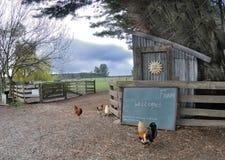 Gospodarstwo rolne Fotografia Stock