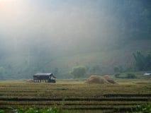 Gospodarstwo rolne i światło w ranku Obrazy Stock