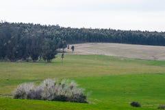 Gospodarstwo rolne i swój pola Obrazy Stock