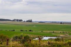 Gospodarstwo rolne i swój pola Obraz Stock