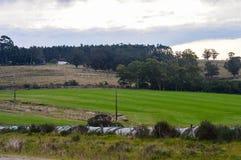 Gospodarstwo rolne i swój pola Fotografia Royalty Free