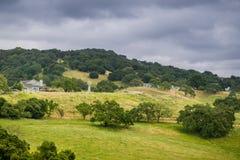 Gospodarstwo rolne na wzgórzach południowa San Fransisco zatoka, Gilroy, Kalifornia zdjęcie royalty free