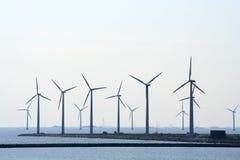 gospodarstwo rolne nabrzeżny wiatr zdjęcia royalty free