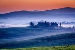 Gospodarstwo rolne oliwni gaje i winnicy w mgłowym ranku Fotografia Stock