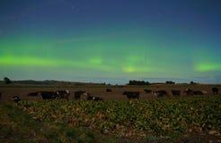 Gospodarstwo rolne pod południowym nocnym niebem zdjęcia stock