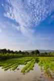 Gospodarstwo rolne w wsi Zdjęcie Royalty Free