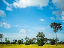 Gospodarstwo rolne z niebieskim niebem i chmurami Zdjęcia Royalty Free