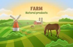 Gospodarstwo rolne z zielonymi polami Wiejski krajobraz młyn Fotografia Stock