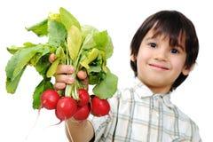 Gosse avec des légumes Image stock