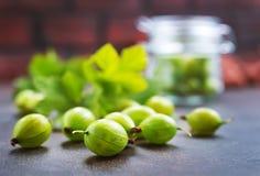 Gosseberry royaltyfria foton