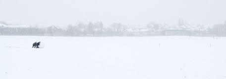 Gosses dans la neige Images libres de droits