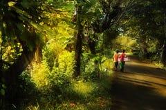 Gosses marchant en matin mystique Image libre de droits