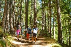 Gosses marchant en montagne Photographie stock libre de droits