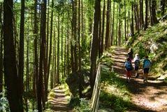 Gosses marchant en montagne Images libres de droits