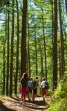 Gosses marchant en montagne Photos libres de droits