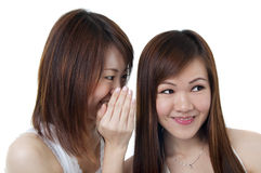 Gossip. Two happy asian friends talking over white background royalty free stock photography
