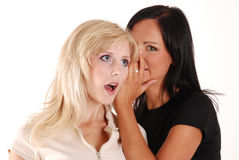 The gossip Royalty Free Stock Photography