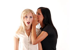 The gossip. Royalty Free Stock Image