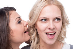 Gossip Royalty Free Stock Image