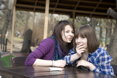 Gossip girls. Royalty Free Stock Photo
