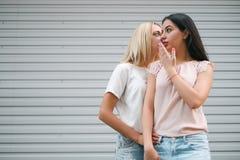 Gossip girls friends city walk concept. Tittle-tattle moment. interesting secret information royalty free stock photos