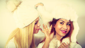 Gossip rumour woman telling secrets to your girlfriend. Relationship gossip. Two multiethnic women in winter clothing whispering secret, funny face expression royalty free stock photo