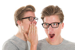 Gossip by twins. Identically adult male twins whispering in ear isolated over white background Royalty Free Stock Photo