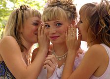 Gossiping girls Royalty Free Stock Photo
