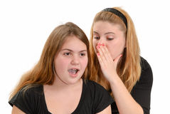 Gossiping Girls Stock Images