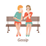 Gossiping girls design. Stock Photography