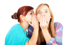 Gossiping girls friends Royalty Free Stock Photography