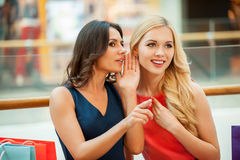 Gossiping. Royalty Free Stock Photography