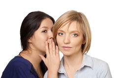 Gossiping women Royalty Free Stock Image
