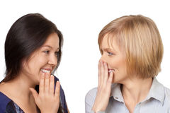 Gossiping women. Close-up portrait of two pretty young women gossiping, over white background Royalty Free Stock Photography