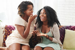 Gossiping women. Pretty cheerful young women gossiping at home Stock Photos