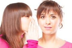 gossipy женщины Стоковая Фотография RF